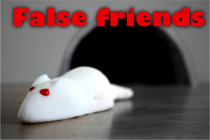 false-friends